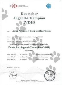 Deutscher Jugend Champion (VDH)